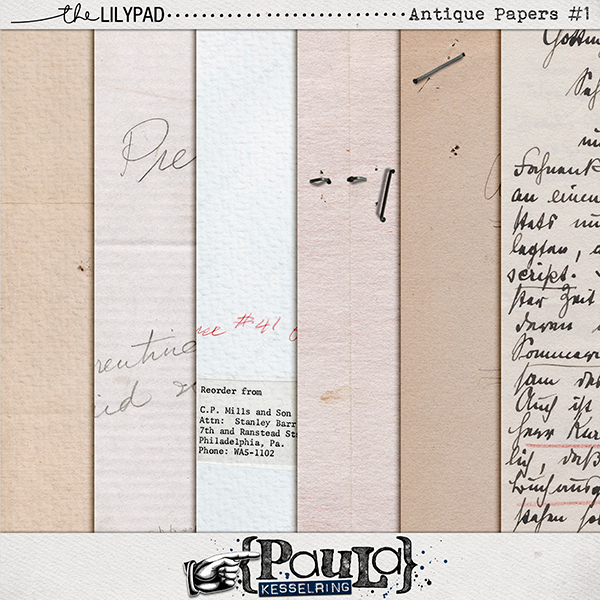 PaulaKesselring_AntiquePapers_Preview