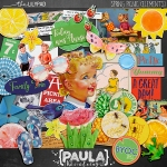 paulakesselring_springpicnic_elements_preview