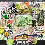 paulakesselring_desertflowerselements_preview300