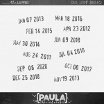 paulakesselring_datestampbrushes_preview