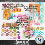 paulakesselring_gettingolder_transfers_preview