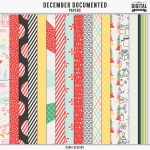 _dunia_decemberdocumented_papers